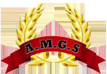 AMGS entreprise de sécurité et de surveillance à Marseille